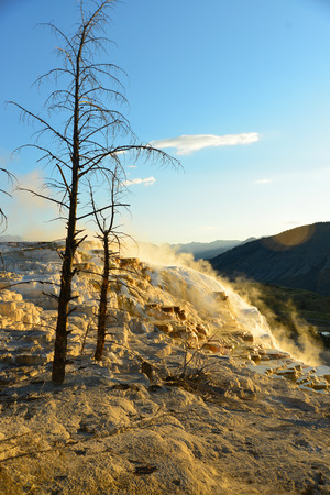 Geothermal flow of hot, carbonate rich water, forms cascading, dark orange travertine terraces, with steam rising and mountains in the background, at Mammoth Hot Springs in Yellowstone, Wyoming Stock Photo