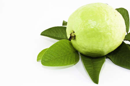 guava: Guava Fruit on white background