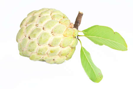 custard apple: custard apple on white