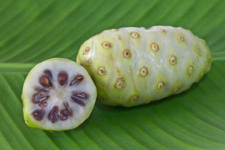 noni fruit: Noni fruit on banana leaf