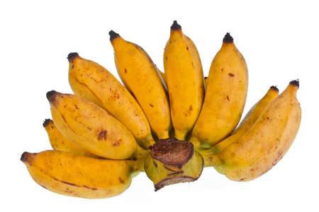 cultivated banana on white background  photo