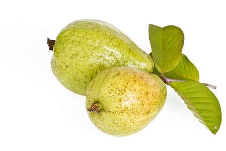 guava fruit on white background Stock Photo - 15898167