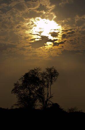 Sunset silhouette photos