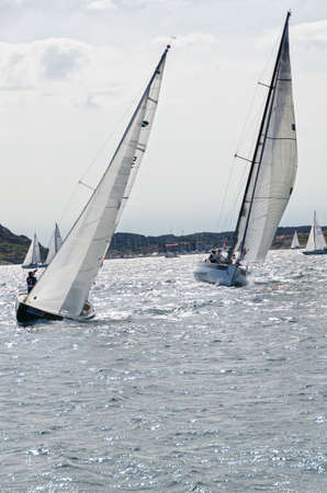 horizontals: one sail competition on swedish westcoast many boat this lovely day