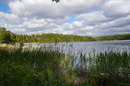 scandinavian landscape: beutiful swedish natur with a lake and forrest and clouds on the sky