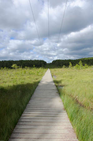 scandinavian landscape: Footbridge over the marshes and marsh sun shines Stock Photo