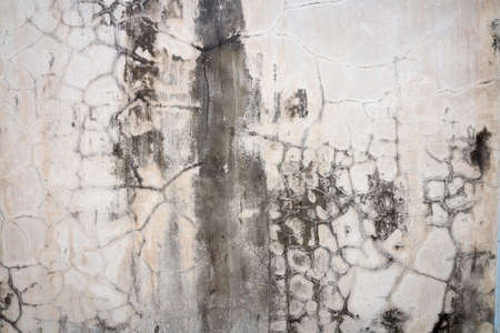 crack wall: rough, dirty and crack concrete wall with stain of lichen and mold, background