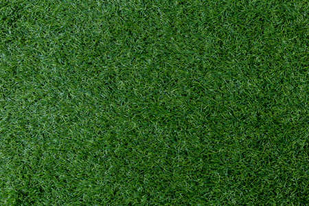 aritificial green grass texture background, top view