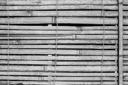 bamboo pattern background, black and white tone