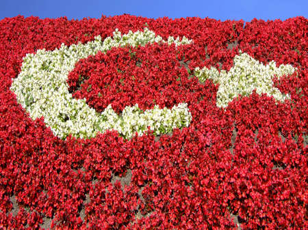 Turkish flag made of flower arrangement photo