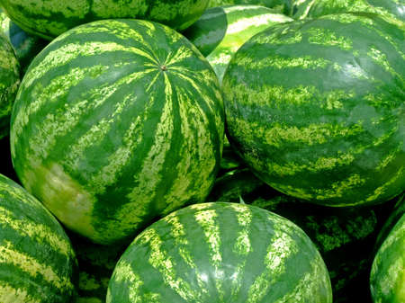 pappy: Bunch of watermelons on an open market