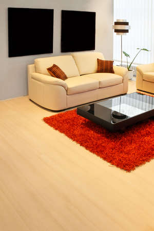 Modern living room with real leather sofa Stock Photo - 2491311