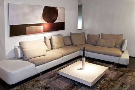 Gray living room with big sitting area Stock Photo - 2691413