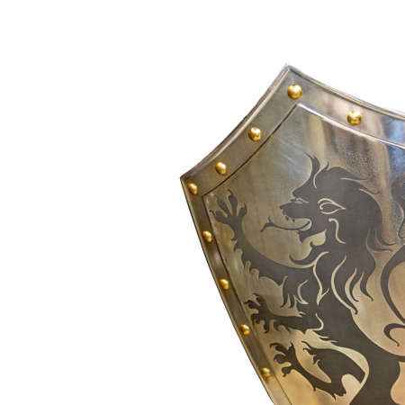 armor: Medieval iron armor shield with lion decoration