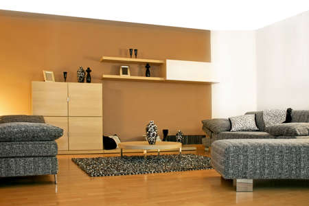 Minimalism style of living room in brown photo