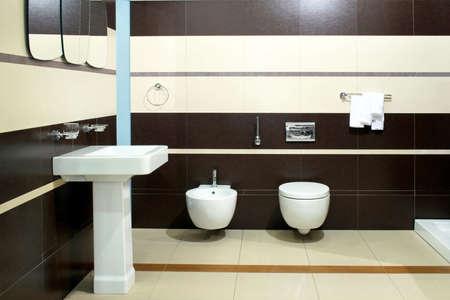 bidet: Big brown bathroom with bidet and toilet