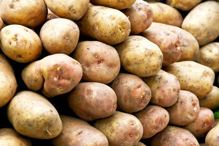 Bunch of old yellow potatoes on the market Stock Photo - 3482608