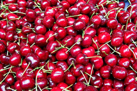 Bunch of fresh natural and organic cherries Stock Photo - 3482620
