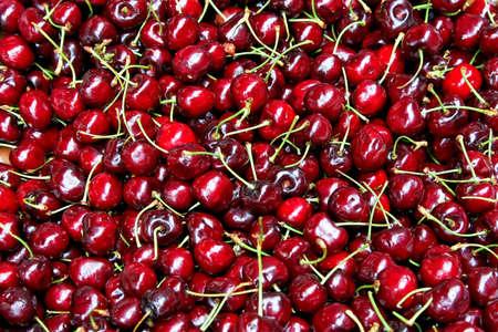 Bunch of fresh natural and organic cherries Stock Photo - 3517338