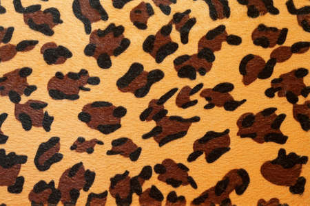 Wild African animal hide pattern yellow leopard photo