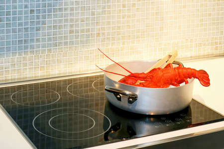 Red lobster steaming in pot on hob
