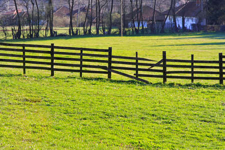 Old wooden broken fence and green grass photo