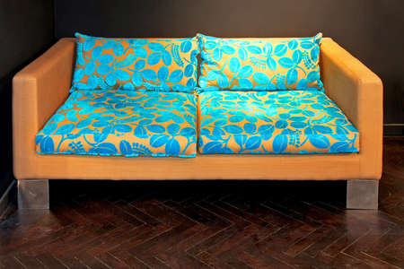 Modern brown sofa with blue leaves decoration Stock Photo - 4179406