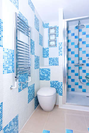 Interior of blue toilet with chrome heater