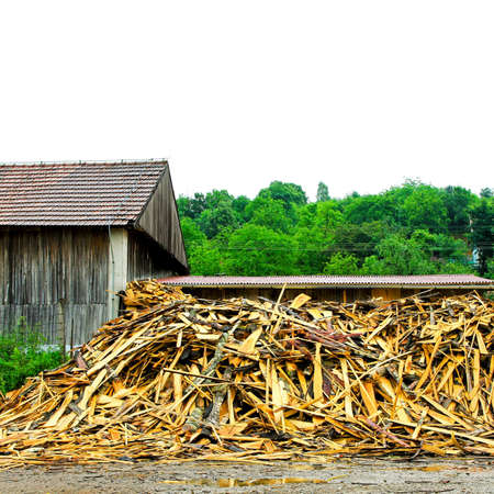 timberland: Big pile of timber wood in front of factory
