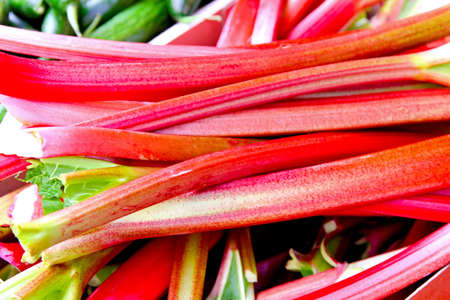 rhubarb: Fresh organic rhubarb vegetable on a market