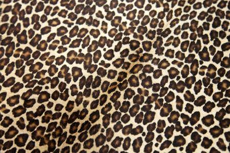 Safari style leopard hide pattern