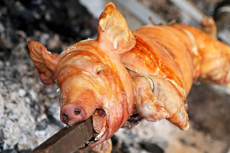 Small pig roasting on the spit fire photo