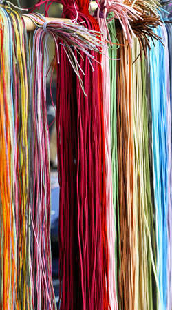 shoelace: Shoelaces display for sale in various color