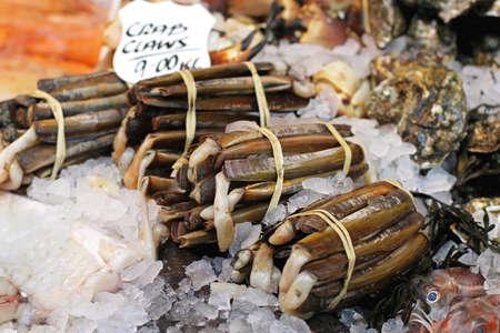 delicacy: Razor clams seafood delicacy at fish market