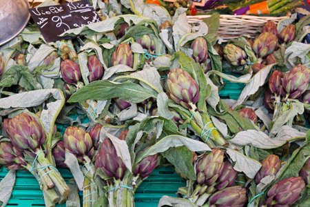 Mediterranean vegetables globe artichokes at farmers market Stock Photo - 16686636