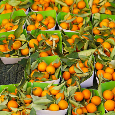 Kumquats in trays for sale at farmers market Stock Photo - 16686511