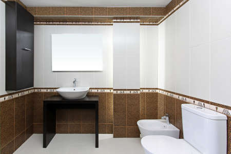 Bright and clean bathroom interior with new fixtures Stock Photo - 16732517