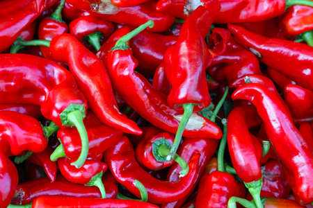 Big bunch of red hot chili peppers Stock Photo - 17048715