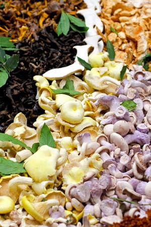 Big assortment of freshly grown mushrooms sold on market Stock Photo - 17123488