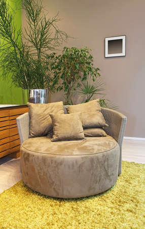 Round armchair and plants in the room Stock Photo - 17213759