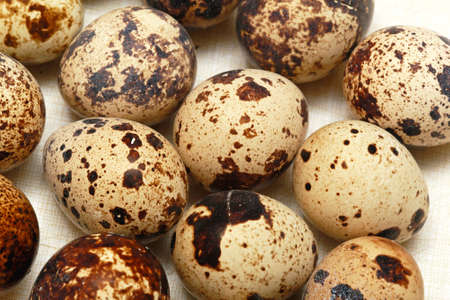 Traditional Japanese cuisine delicacy organic quail eggs photo