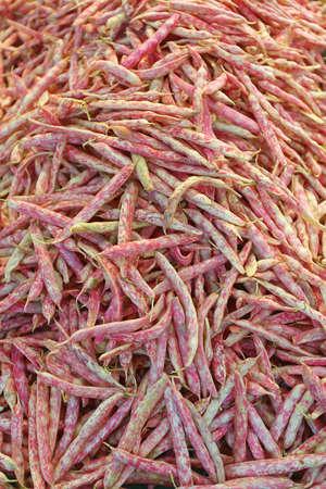 Pile of Borlotti Beans at Farmers Market Archivio Fotografico