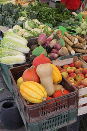 Gourds Squash Pumpkin and Root Vegetables at Farmers Market Stock Photo
