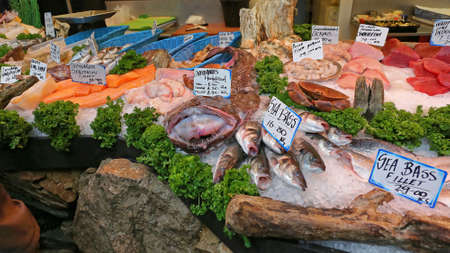 Fruits de mer frais à l'étal du marché aux poissons