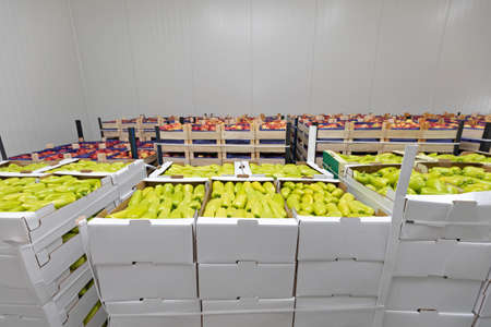 Peppers and Apples in Crates Storage Warehouse Archivio Fotografico