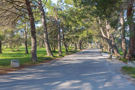 Asylum Road in Saint Remy de Provence France