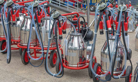Portable Cow Milking Suction Machine at Dairy Farm Stock Photo
