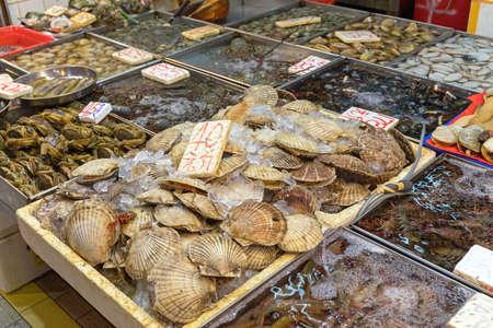 Fresh Scallops Shells at Farmers Market Stall