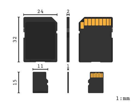 Memory Sd Card And Micro Sd Card Diagram Ratio Scale Vector Royalty