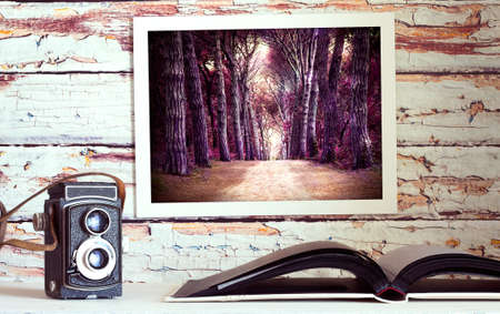 vintage photo: Photo album, photos on the wall and vintage old camera